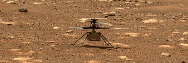 Will the Mars Helicopter Persevere?